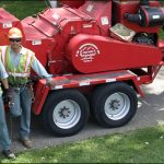 Tree Removal Services, Park Ridge, IL