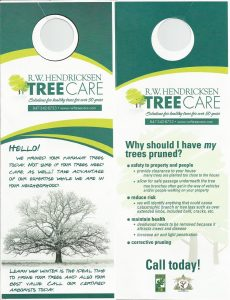 Finding a Reliable Tree Care Service Provider