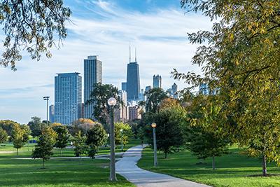 arborist-tree-care-service-chicago-suburbs-il