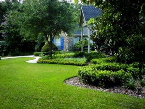 Tree Treatments for Winnetka, IL