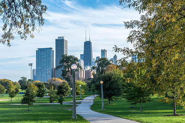 Commercial Abortist Tree Care Services in Chicago, Illinois