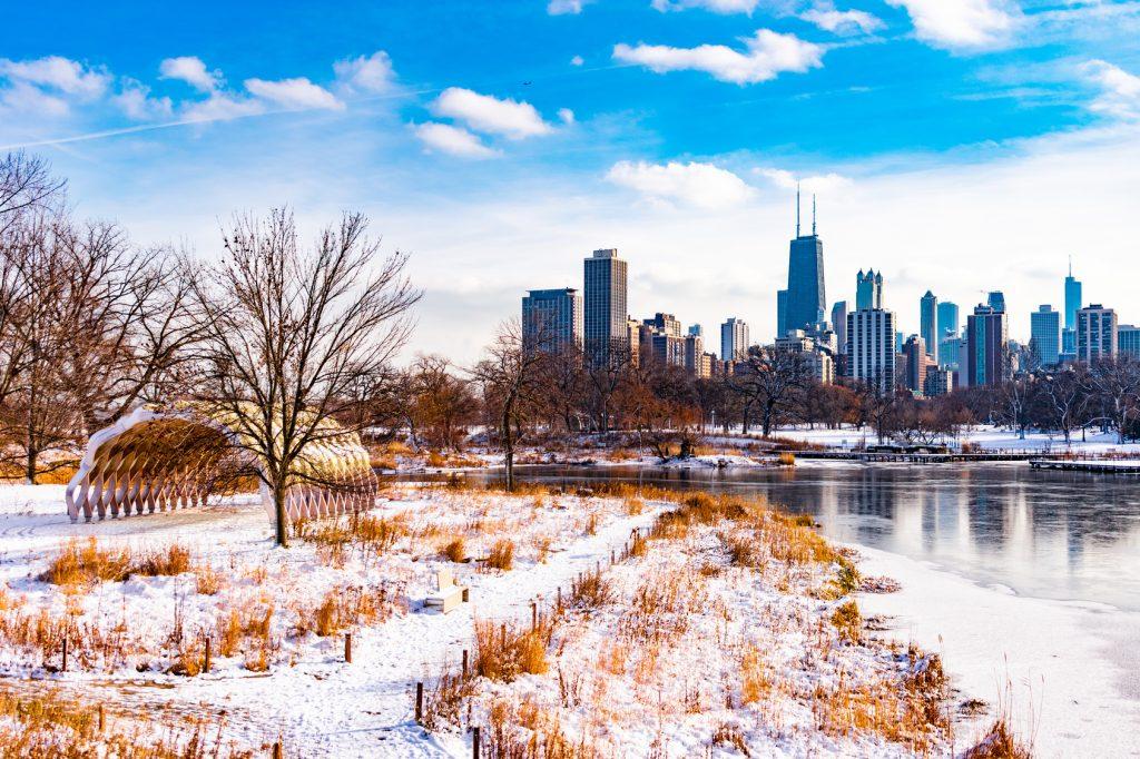 chicago-winter-skyline-trees-park