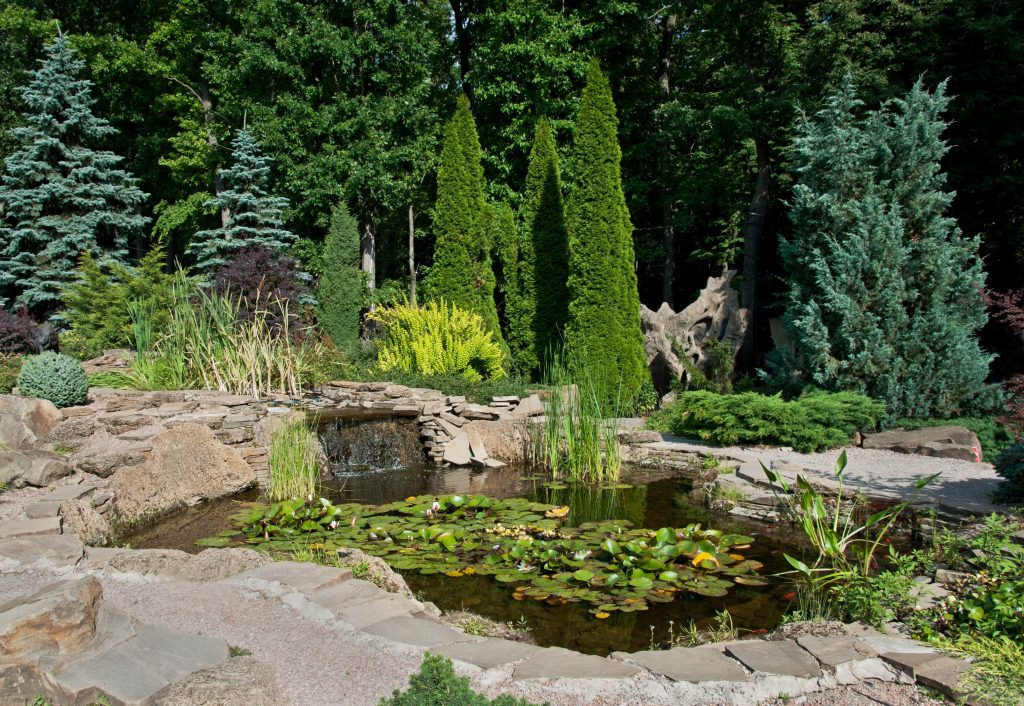 pond-with-trees-chicagoland-backyard